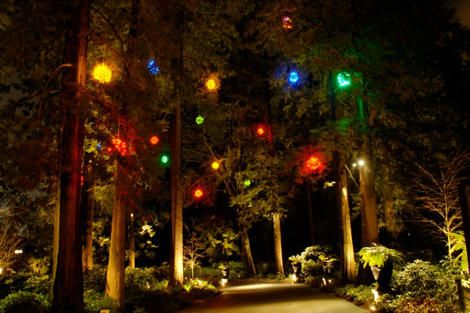 Commercial Christmas Lights - Multicoloured Lighted Ornaments