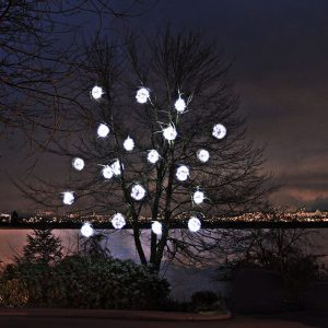 Residential Christmas Lights - Pure White Lighted Ornaments