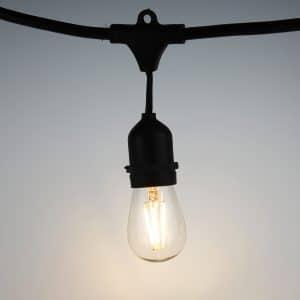 LED Edison Bulb