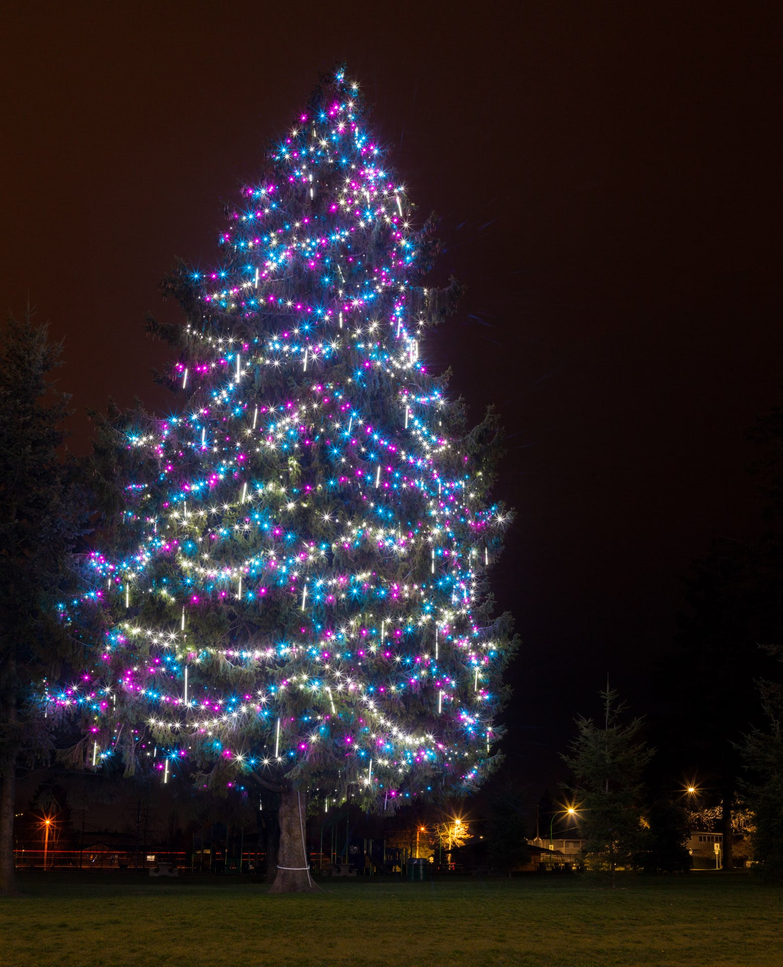 Commercial Christmas Tree Multicoloured Light Installation
