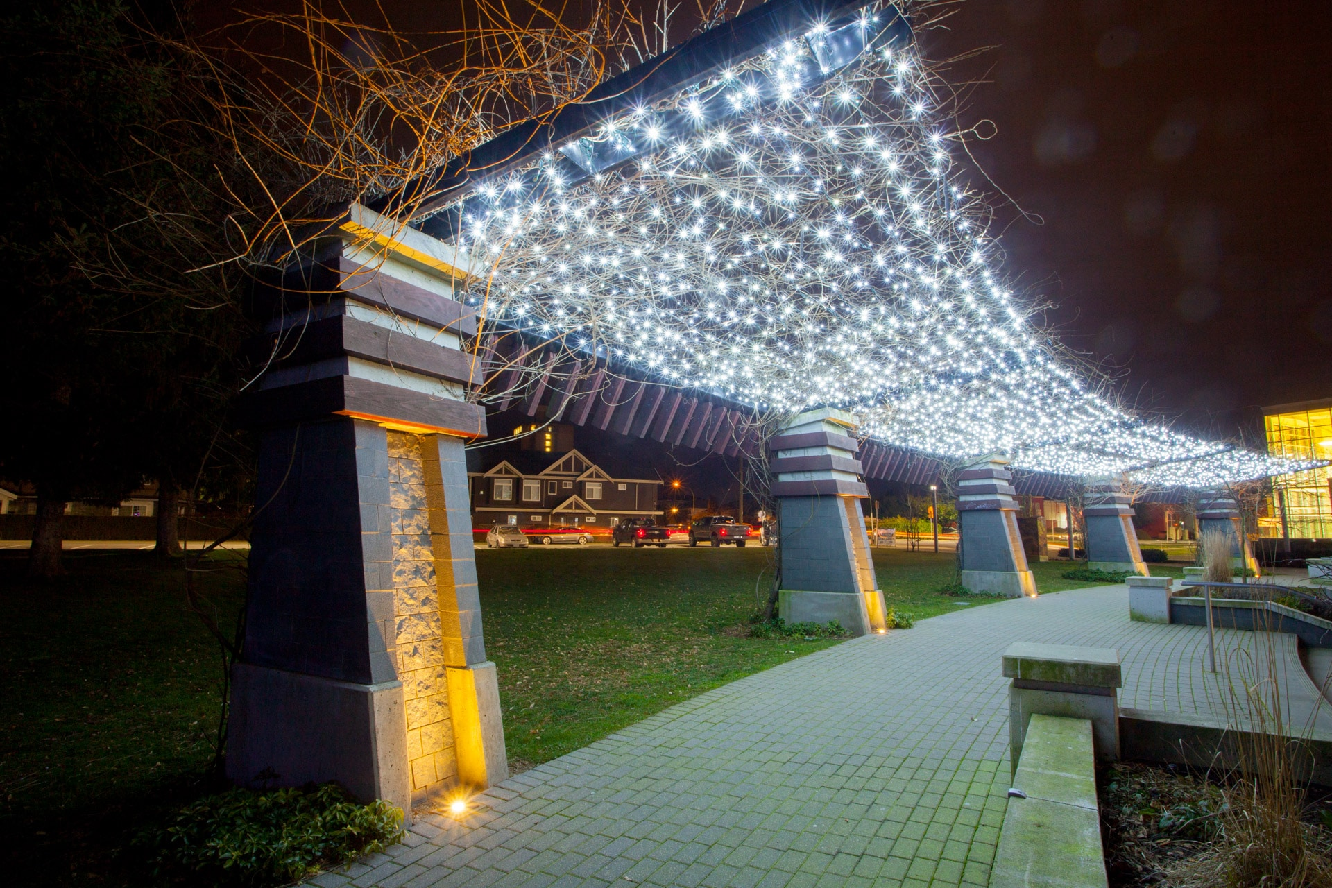 Pure White Canopy Commercial Christmas Lights