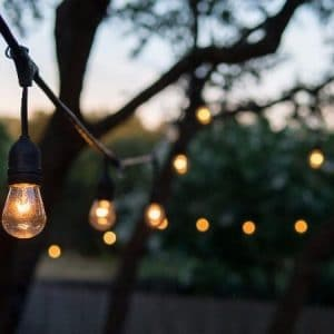 FestiLight - Outdoor Light Installation - Garden Lights