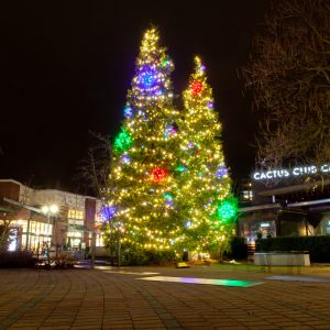 Festilight - Christmas Lights - Commercial Installation - Park Royal