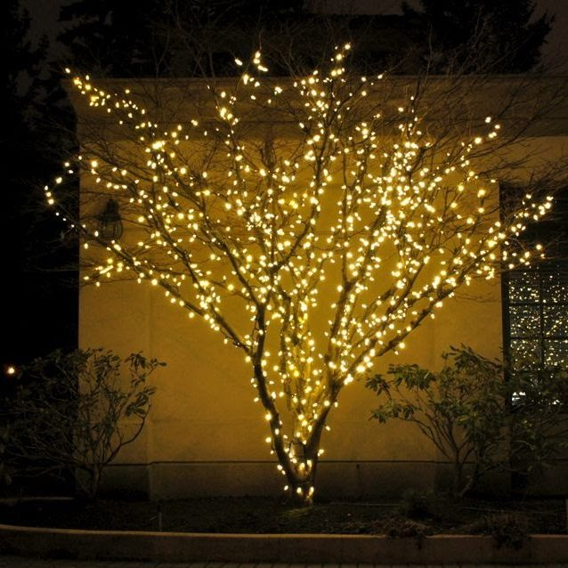 FestiLight - Residential Christmas Installation - Mini-Lights in Tree - Branch Wrap - Warm White